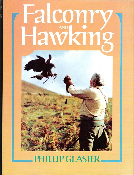 Image for Falconry and Hawking