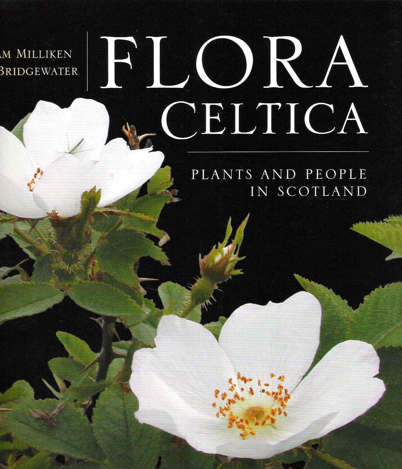 Image for Flora Celtica: Plants and People in Scotland.