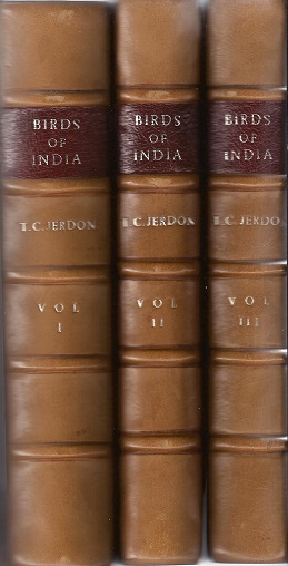 Image for The Birds of India being a Natural History of all the Birds Known to Inhabit Continental India.