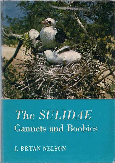 Image for The Sulidae: Gannets and Boobies (Aberdeen University studies series)