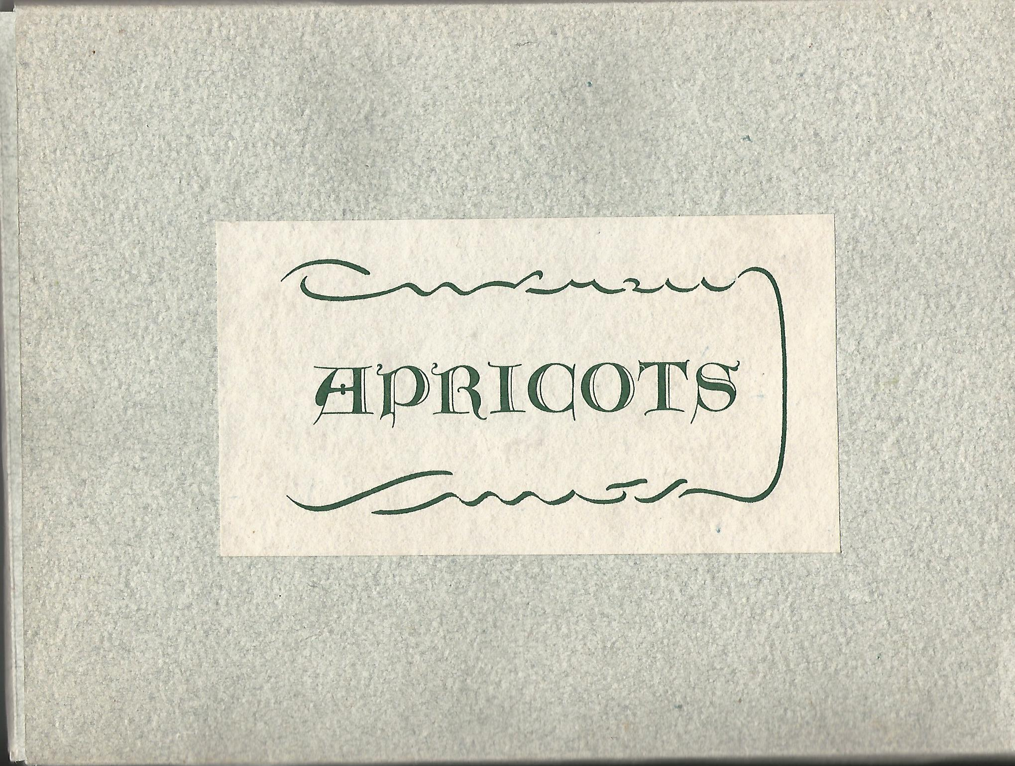 "Image for ""Apricots"" - Handmade Paper."