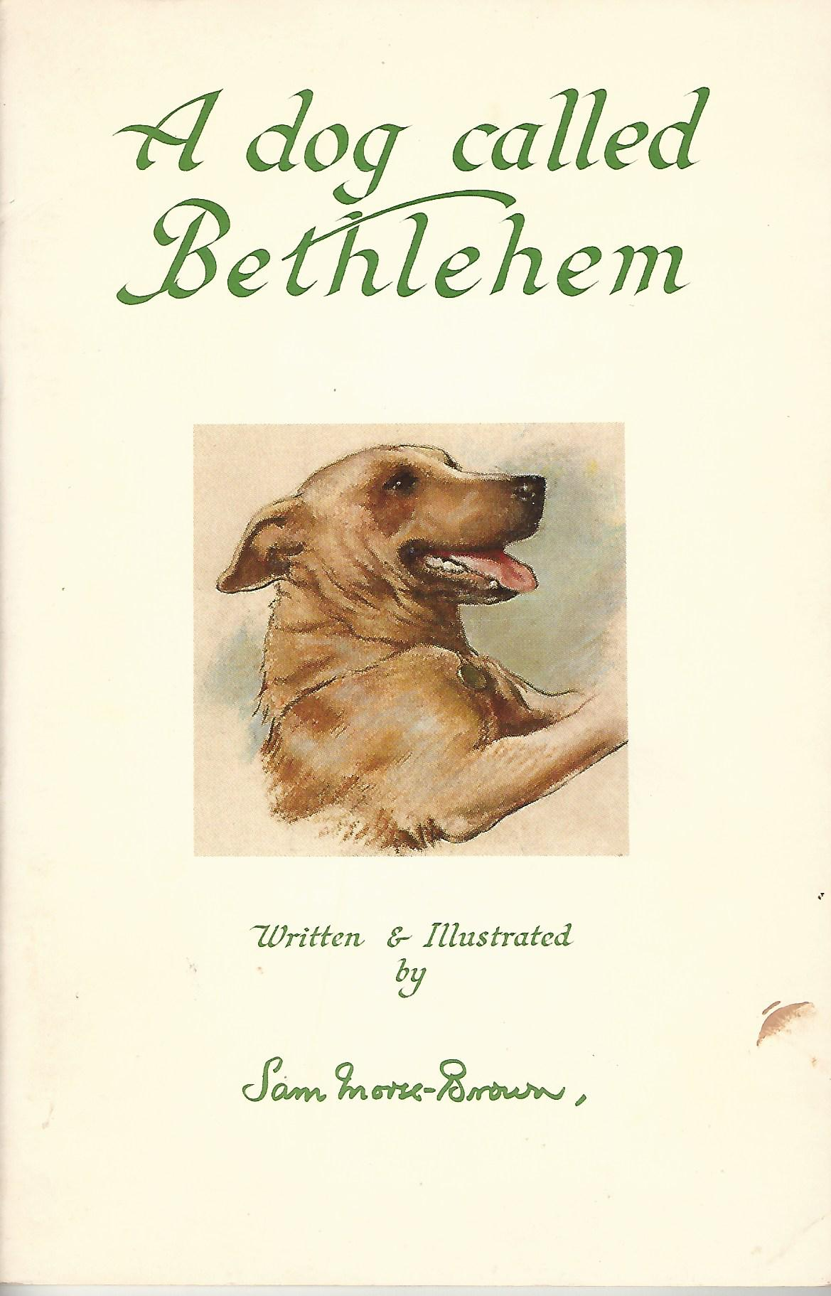 Image for A Dog Called Bethlehem.
