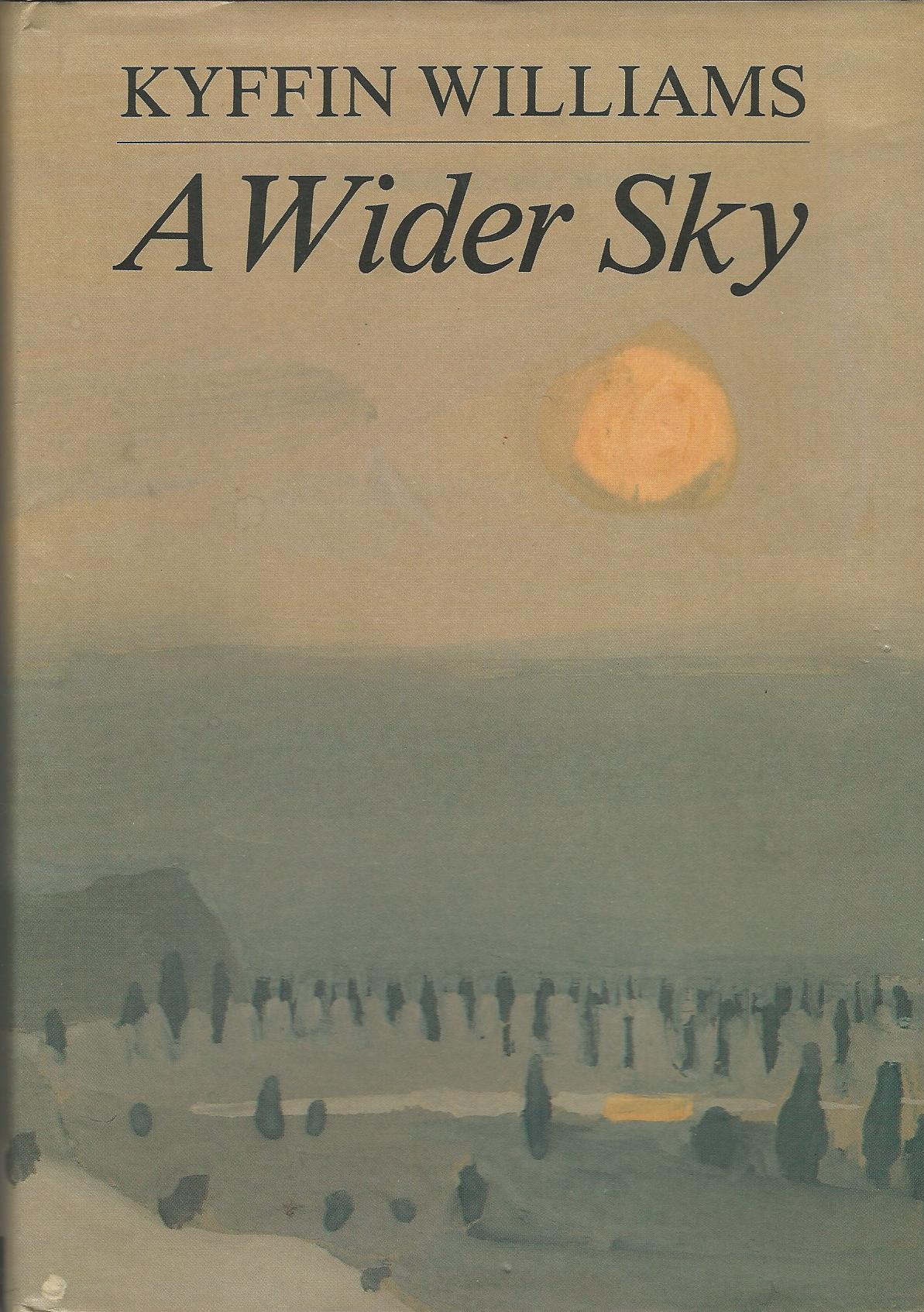Image for A Wider Sky