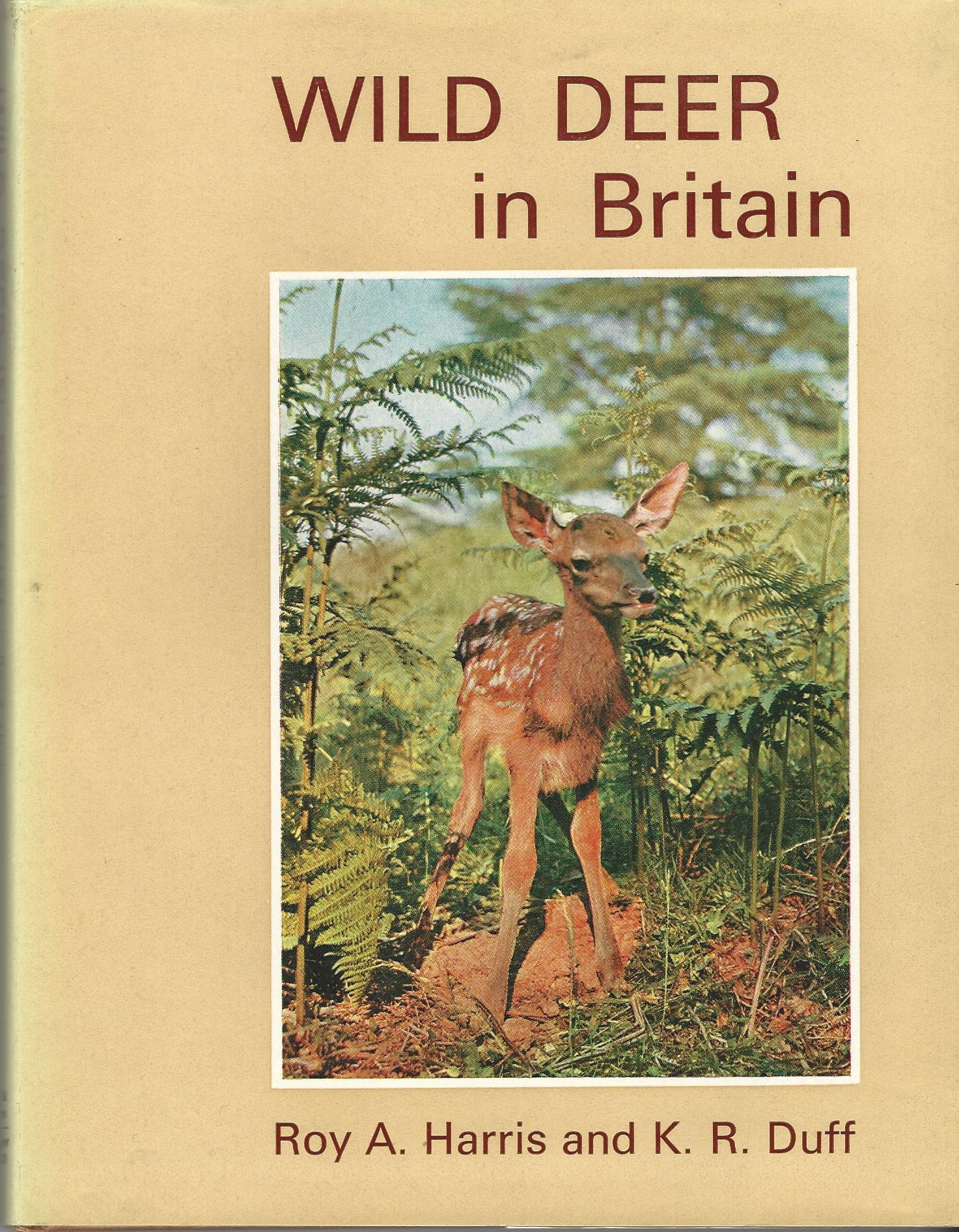 Image for Wild Deer in Britain