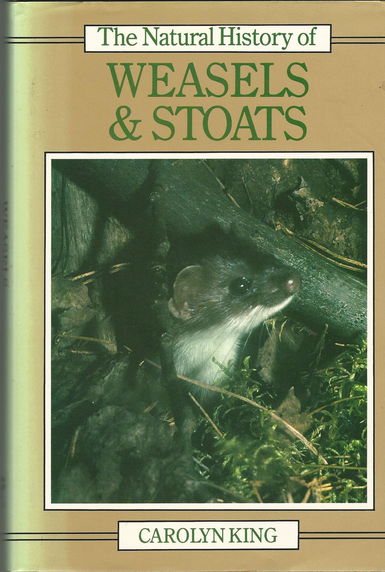 Image for The Natural History of Weasels and Stoats