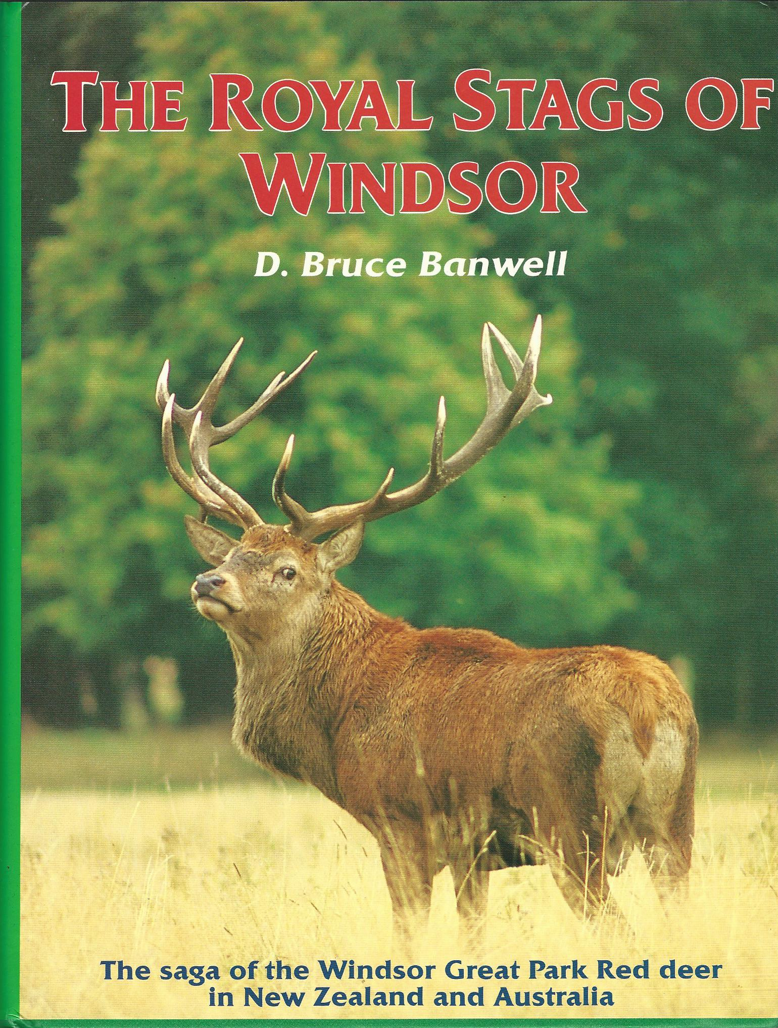 Image for The Royal Stags of Windsor