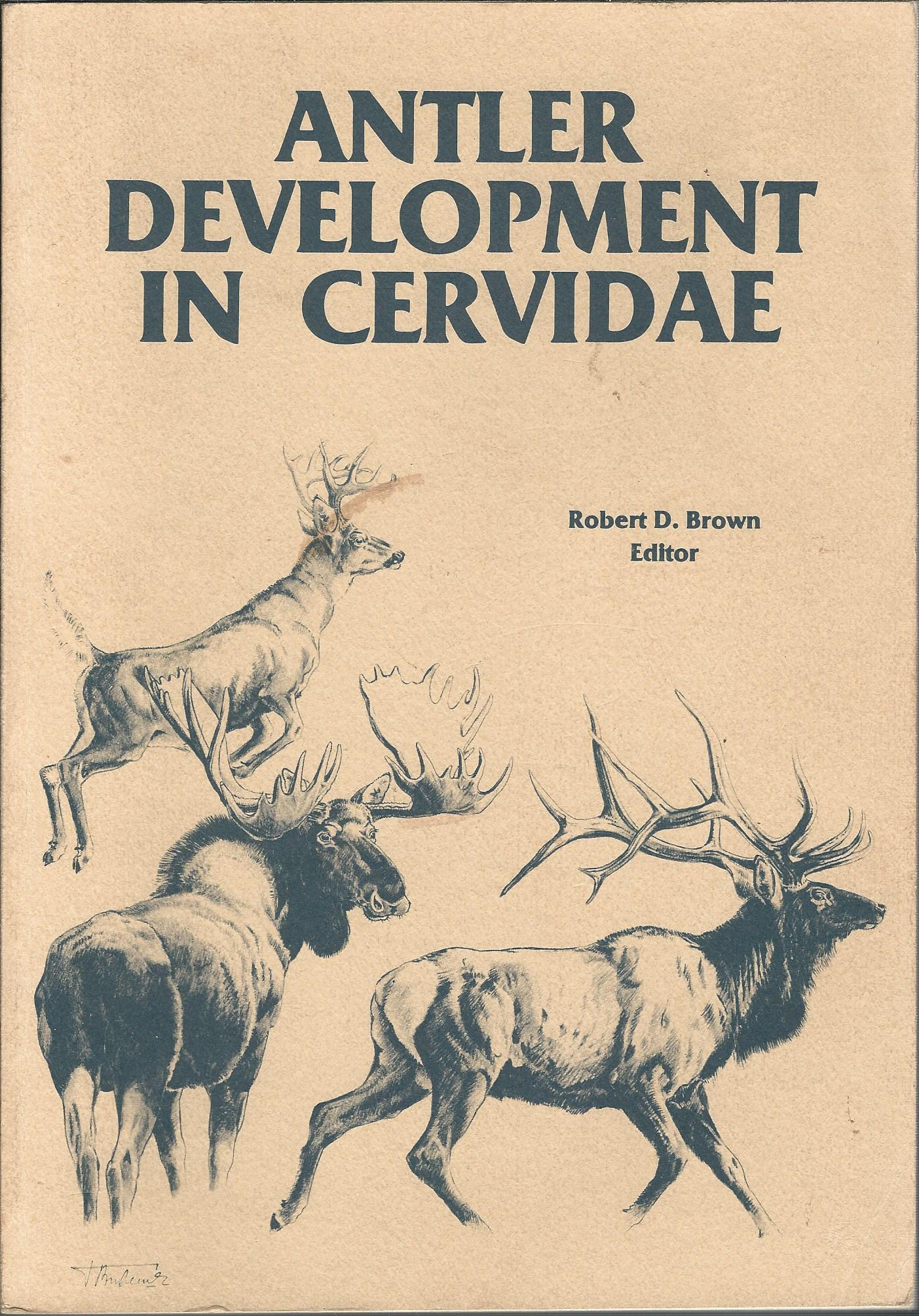 Image for Antler Development in Cervidae.
