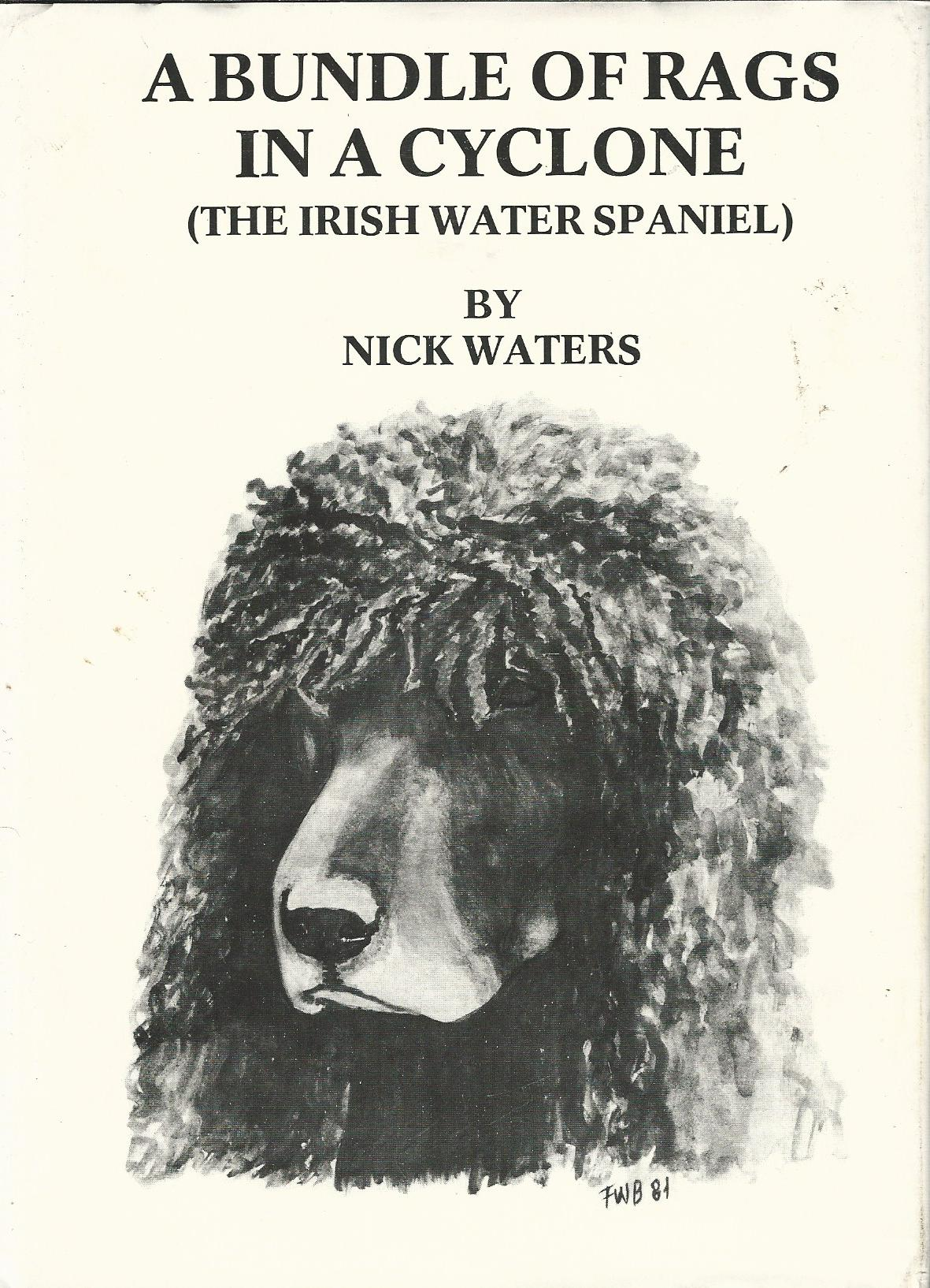 Image for A Bundle of Rags in a Cyclone. (The Irish Water Spaniel)