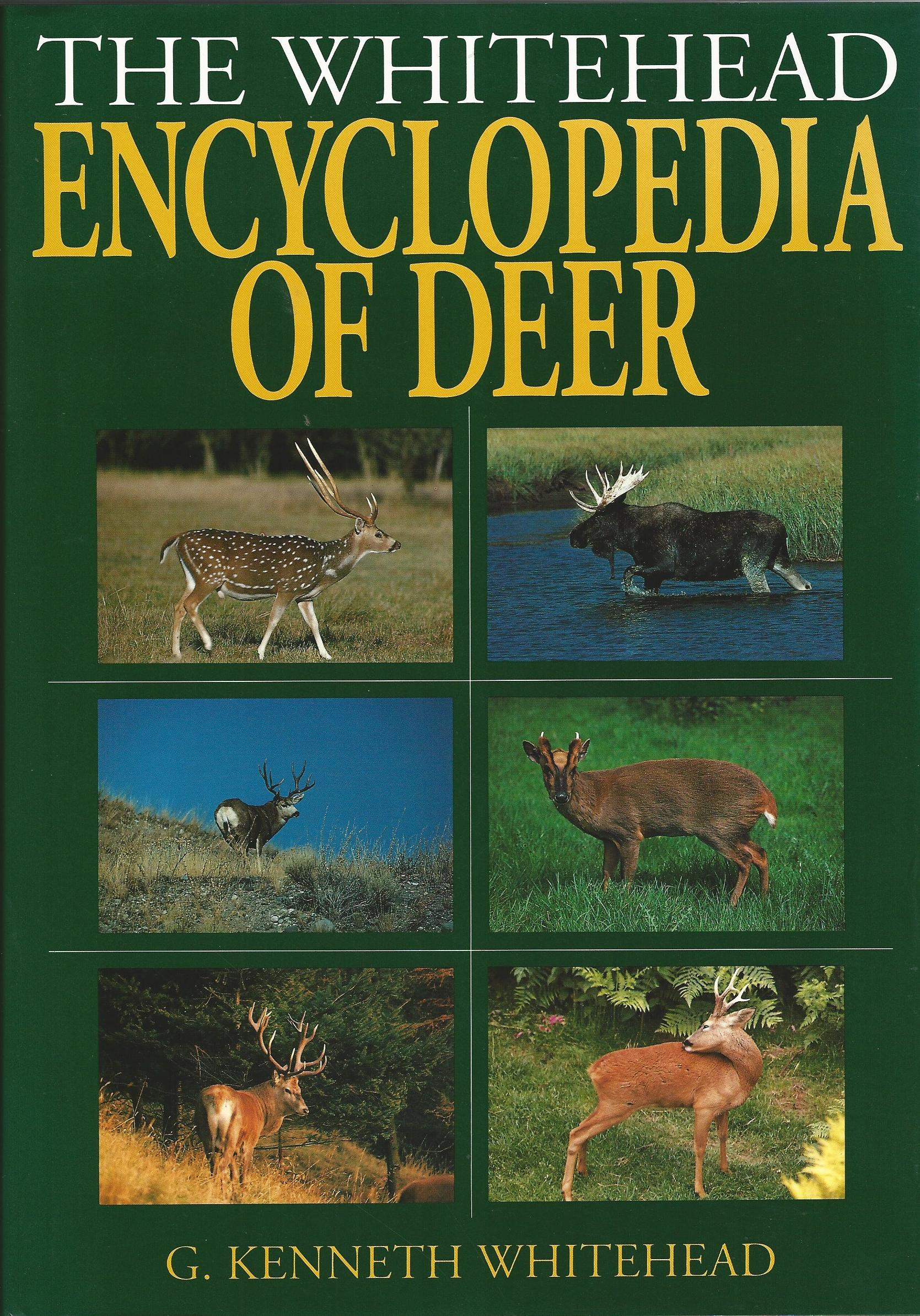 Image for The Whitehead Encyclopedia Of Deer
