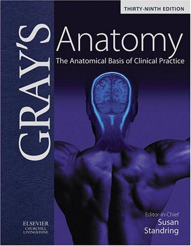 Image for Gray's Anatomy: The Anatomical Basis of Clinical Practice