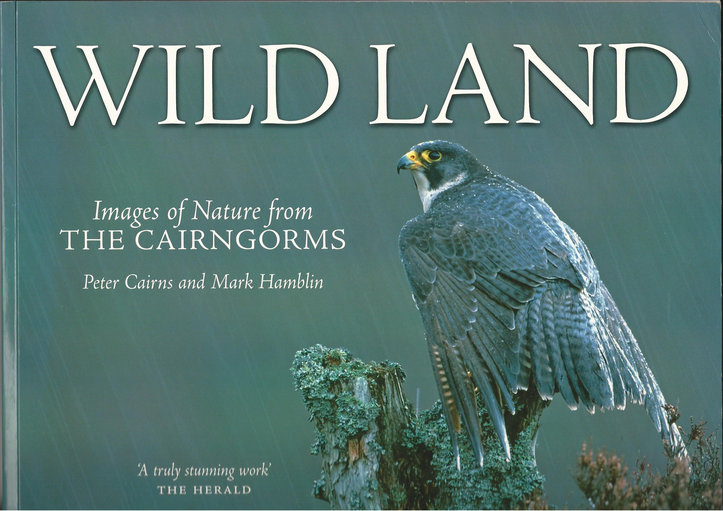 Image for Wild Land : A Photographic Journey Through the Cairngorms